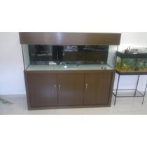 Aquario 120x50x60 Marinho