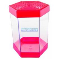 Beteira Plastica 1 Litro Litwin Rosa - Aquapet