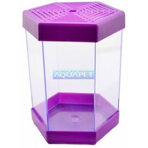 Beteira Plastica 1 Litro Litwin Roxa - Aquapet