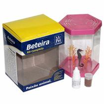 Kit Beteira Para Peixe Betta Completo Mr.pet - 1 Litro