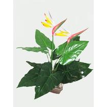 Árvore Pássaro Do Paraíso - Artificial Estrelissia Plantas