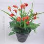 Arranjo Copo De Leite 25 Cm Cores Diversas - Flor Artificial