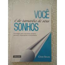 Você É Do Tamanho De Seus Sonhos, César Souza