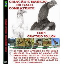 Galos De Raça Criação E Treino Dvd 5/1 Toulon Frete Grátis