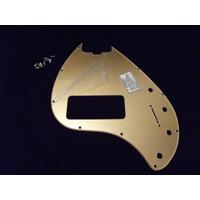 Escudo Music Man Sting Ray 5 Cordas Dourado 10 Furos