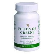 Forever Verdes Dos Campos Fields Of Greens