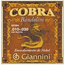 Encord. Giannini P Bandolim Serie Cobra Gesbn Leve C Bolinha