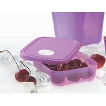 Freezertime Tupperware - Diferentes Tamanhos, Um Único Preço