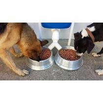 Derivador De Ração Para Alimentadores Dog Feeder