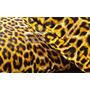 Tecido Chita Animal Print - Onça Artesanato, Decoração 1m