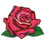 B350 Coleção Bordados Computadorizados Flores Rosas