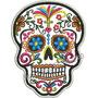 Patch Bordado Caveira Mexicana Color Skull Moto 10cm Car749