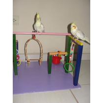 Playground Para Aves (calopsitas, Periquitos, Papagaio..) 02