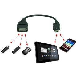 Cabo Reto Usb Host Otg Tablet Xoom Galaxy S2 I9100 N900 N810