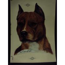 American Staforshire Adesivos De Cães Para Carros, Dupla Fac