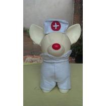 Chihuahua Cofrinho Enfermeiro