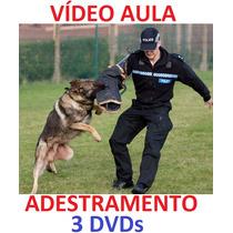 Pastor!!! Para Todas As Raças, Adestramento De Cães 3 Dvds