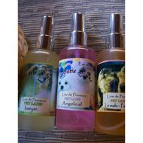 Linha Pet Society Eau Parfum Marie Fleur Imports Aromaterapi