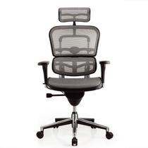Cadeira Ergonômica Ergohuman Presidente