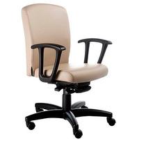 Cadeira Diretor St Office Com Apoia Braços Fixo, Base Rhodes