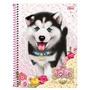 Caderno Capa Dura Universitário Jolie Pet 96 Folhas - Til