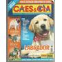 Revista Cães & Cia Nº344 - Janeiro 2008 - Labrador.