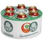 Cooler 3g Palmeiras 6 Latas Ou Long Neck - Doctor Cooler