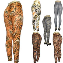 Lote 12 Legging Plus Size Estampa Animal Em Liganete