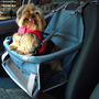 Assento Cães Transpet Cadeirinha Cachorro Pet Auto Carro