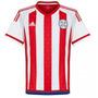 Camisa Paraguai Home 15-16 Importada