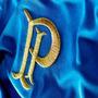 Palmeiras Centenário Camiseta Azul - Frete Grátis !!