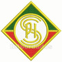 Patch Bordado Tmg001 Cruzeiro Palestra Itália Escudo Símbolo