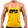 Combo 11 Regatas Musculação Cavada Animal Arnold Golds Gym