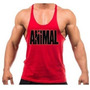 Kit Com 5 Regata Super Cavada Animal Musculação Bodybuilding