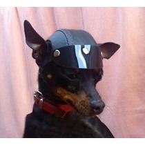 Capacete Pets (cachorro)