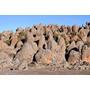 Poster (95 X 63 Cm) Rafu Lava Flow Rock Formations Sanetti