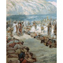 Poster (46 X 61 Cm) The Moabites Taken Prisoners James