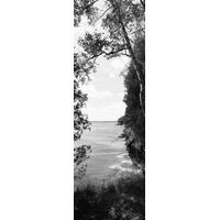 Árvores Em O Lacustre Caverna Ponto Condado Park Lago