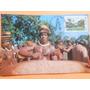 Cartão Postal Índios Do Brasil Kamayurá Selado Com Carimbo
