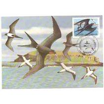 Ml-6575 Max. Postal Pq. Nac. Abrolhos Atobá 1985