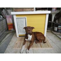 Casinha De Cachorro K9 - Dog-04k9 Beagle - Buldogue Inglês