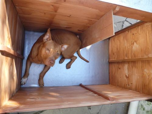 Casinha De Cachorro K9 - Dog-05k9