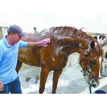 Shampoo Neutro Para Cavalos Embalagem De 5 Litros