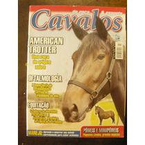Revista S/cavalos Paint Horse Magazine 50 - Cod.01/21835