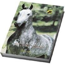 Livro Garanhões Mangalarga Marchador 2001