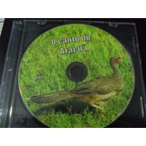 Cd -de Canto -de Pássaros - O Canto Do Aracuã Raríssimo