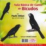 Bicudo - Cd Aula De Canto Do Bicudo - Frete Grátis