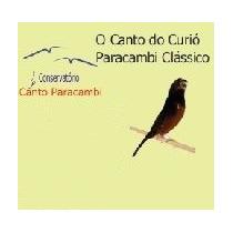 Ensino Canto Paracambi Filhotes Curió 1 (cd)