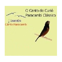 Ensino Canto Paracambi Curió Módulo Criação (cd)