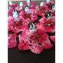 Lembrancinha De Nascimento - Bonecas Croche - Kit C/ 12 Und